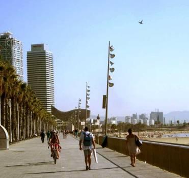 Lounge the palm-lined promenade along Barceloneta Beach.