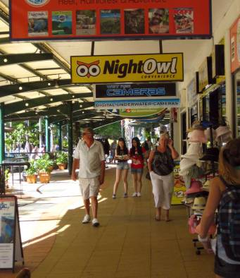 According to Tourism Australia, the Cairns region is the fourth-most popular destination for international tourists in Australia.